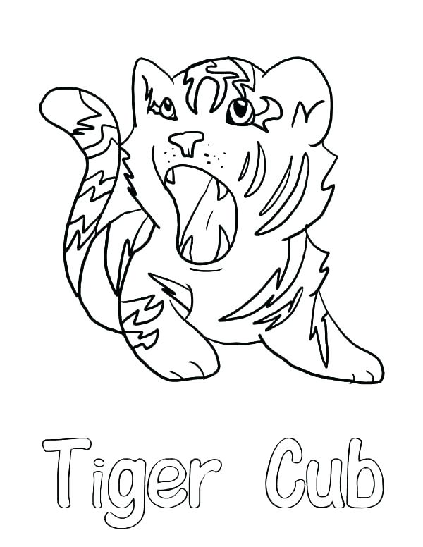600x776 Coloring Pages Of Tigers Tiger Head Coloring Page Tiger Cub
