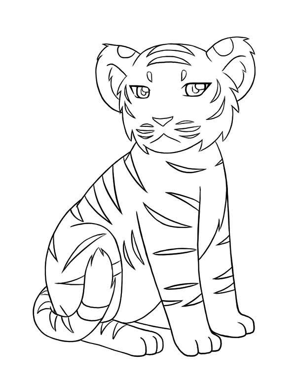 600x776 A Little Tiger Cub Not In A Good Mood Today Coloring Page