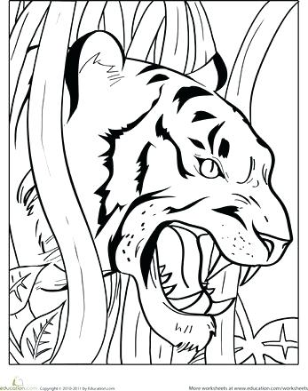 347x440 Tiger Coloring Pages Drawn Tiger Coloring Page Cute Tiger Cub