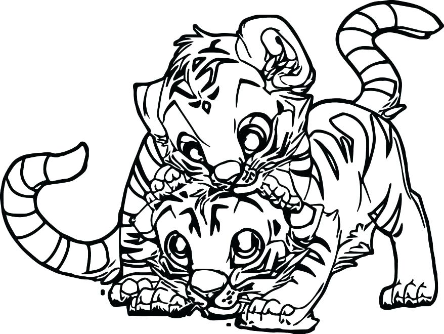 878x660 Tiger Cub Coloring Pages Free Tiger Coloring Pages Two Baby Page