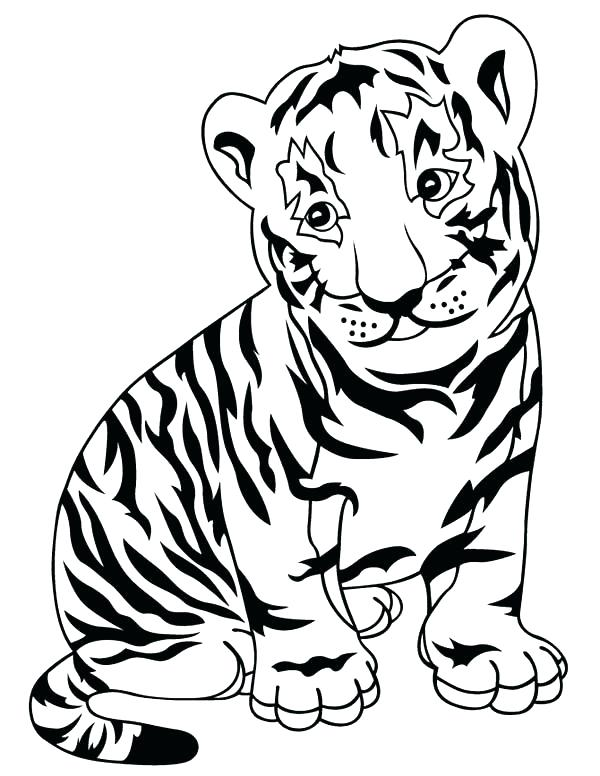 600x776 Tiger Pictures To Color Tiger Coloring Pages Tigers Coloring Pages