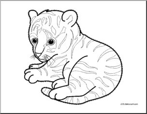 304x236 Baby Tiger Coloring Pages Clip Art Baby Animals Tiger Cub Coloring