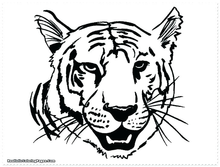 728x553 Tiger Face Coloring Page Coloring Pages Tiger Cute Valentine