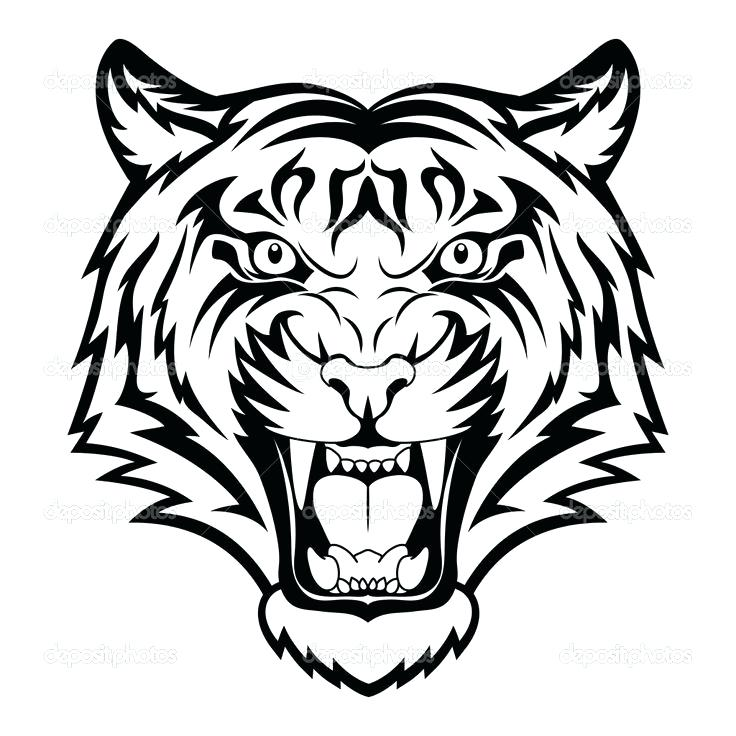 736x736 Tiger Face Coloring Page Tigers Coloring Pages Cure Tigers