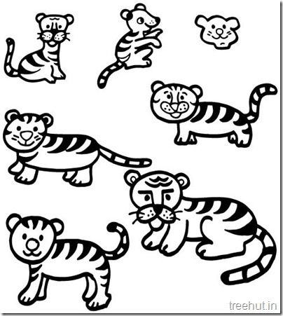404x451 Tiger And Tiger Face Coloring Pages