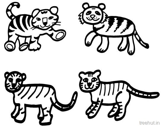 543x426 Tiger And Tiger Face Coloring Pages