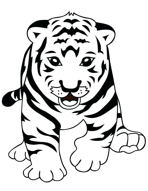 600x776 Cute Tiger Coloring Pages A Cute Tiger Cub In Front Of Camera