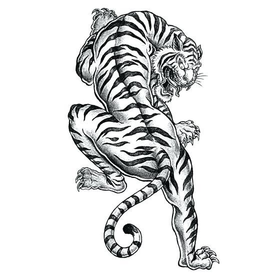 550x550 Tiger Coloring Pages Tiger Coloring Page Coloring Tiger Head
