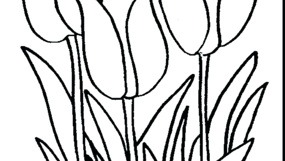 960x544 Lily Flower Coloring Pages Water Lily Pad Coloring Page Tiger Lily