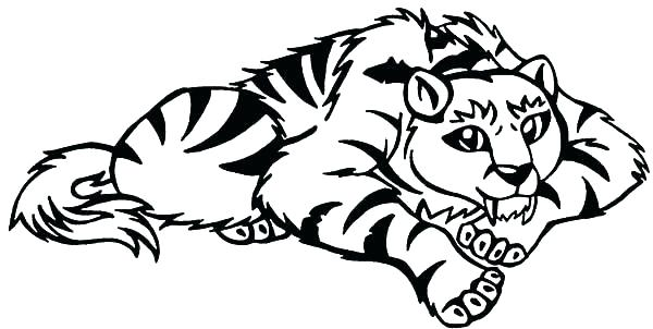 600x302 Tiger Coloring Pages Free Tiger Coloring Pages For Adults