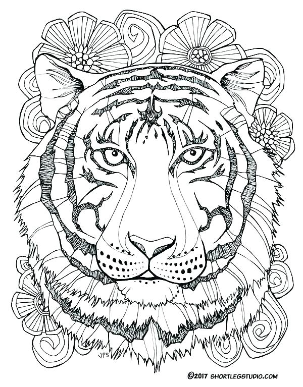 600x767 Tiger Coloring Picture Colouring Pages Of Tiger Printable Tiger