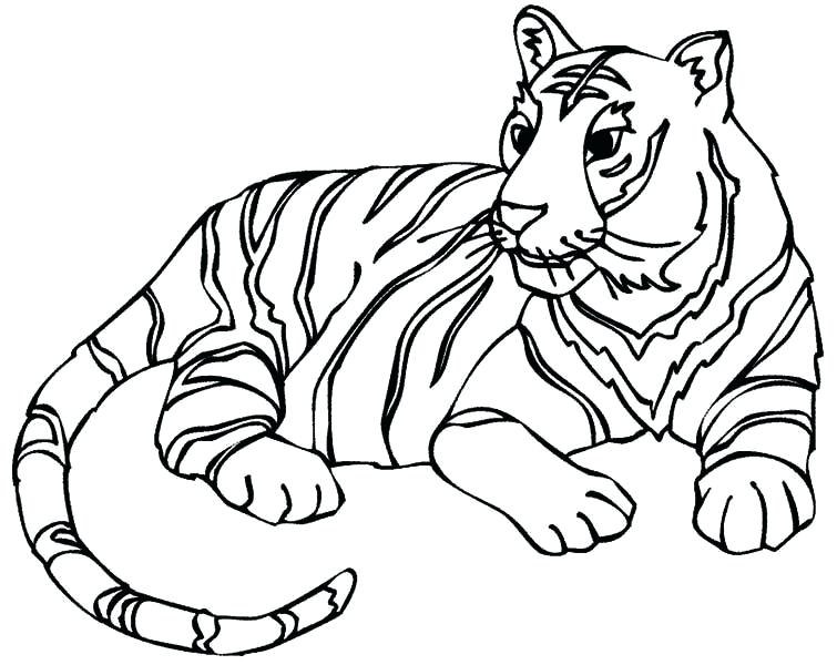 755x600 Tiger Coloring Picture Princess Tiger Lily Coloring Page