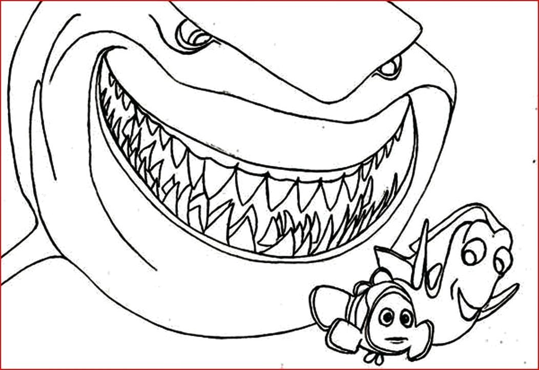 1051x721 Tiger Shark Coloring Page Co Luxury Free Printable Shark Coloring