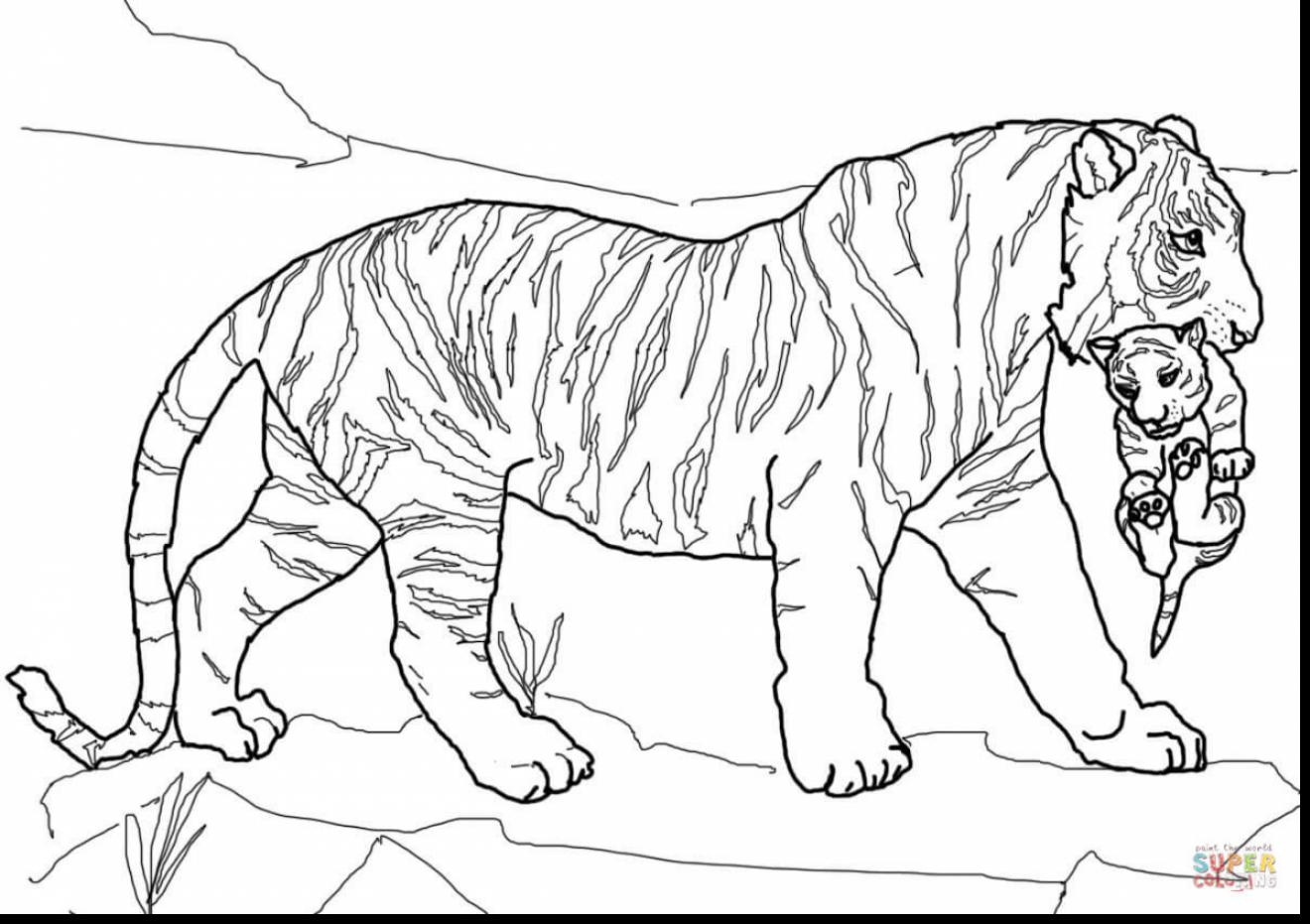 1320x931 Tiger Tank Drawing At Getdrawings Com Free For Personal Use