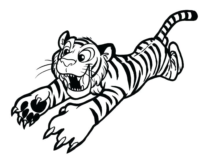 728x563 White Tiger Coloring Pages S White Tiger Colouring Pages