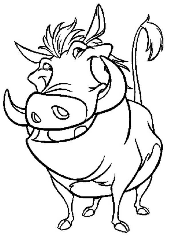 600x821 Timon And Pumbaa Coloring Pages New Simba Timon And Pumbaa Running