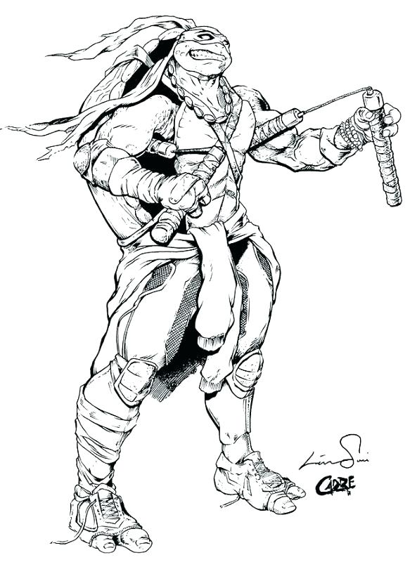 593x800 Ninja Turtle Pictures To Color