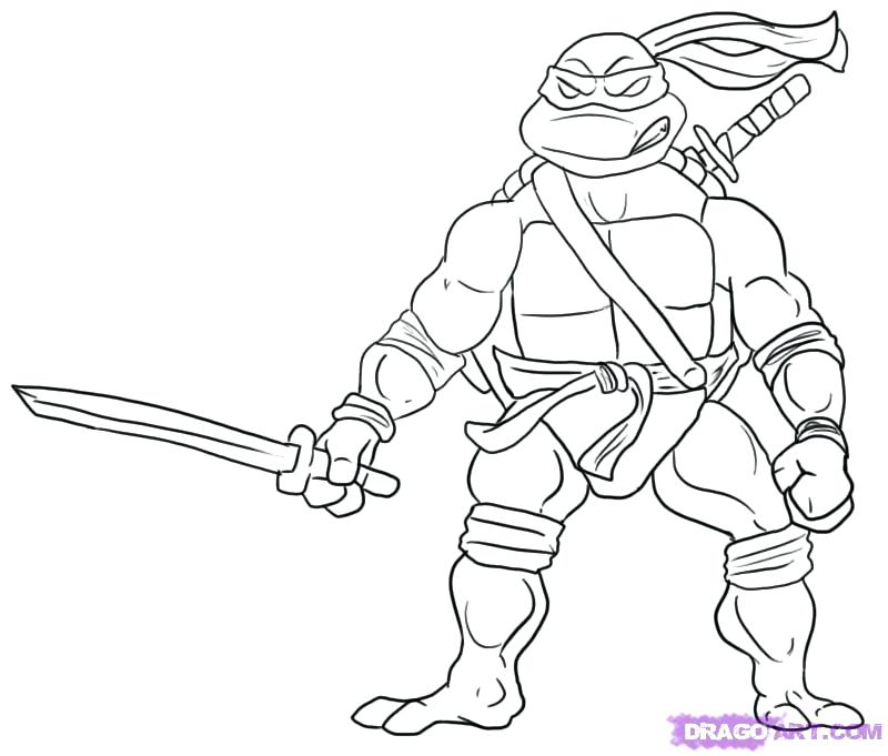 800x681 Teenage Mutant Ninja Turtles Printable Coloring Pages Turtle