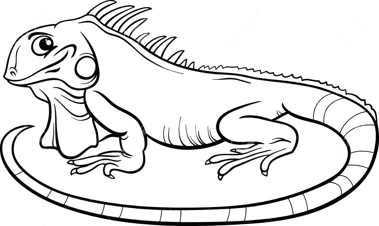1300x774 Coloring Pages Online Printable Cute Iguana Page Sticking Out Its