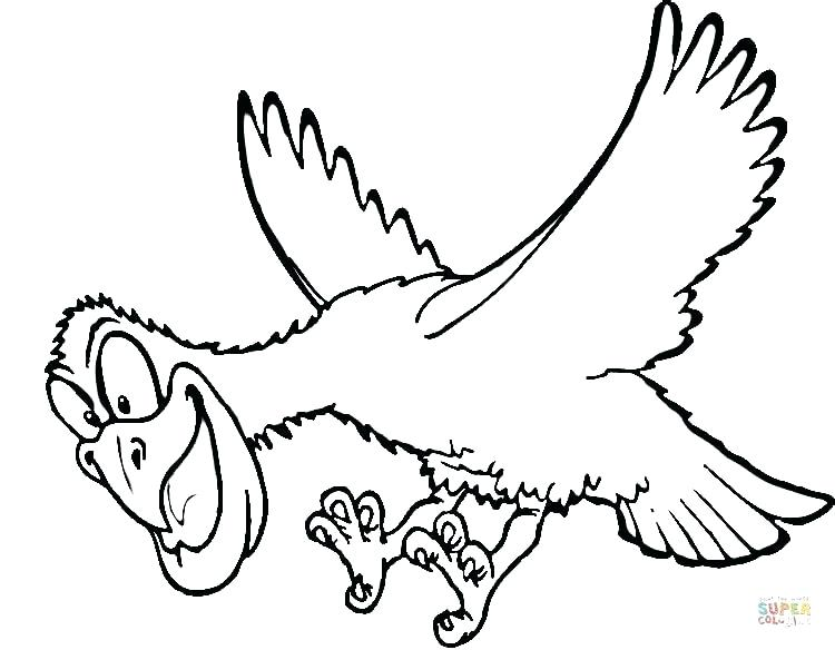 750x584 Hawk Coloring Picture Hawk Coloring Pages Yoschool Site