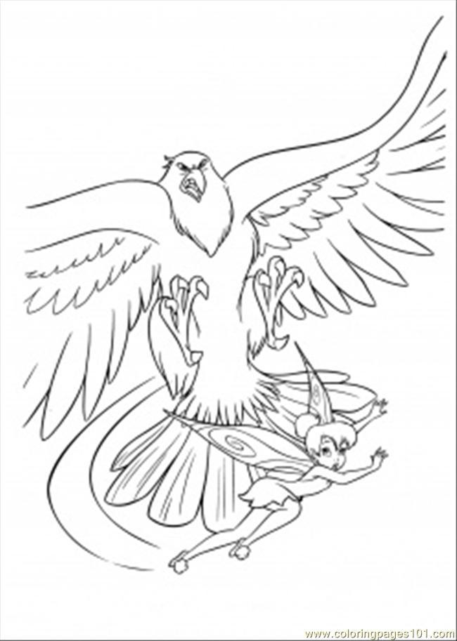 650x913 Hawk Coloring Page