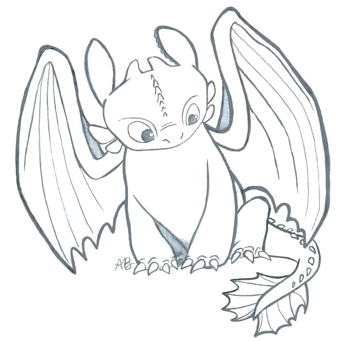 736x702 Toothless And Hiccup Coloring Pages Index Coloring Pages Toothless