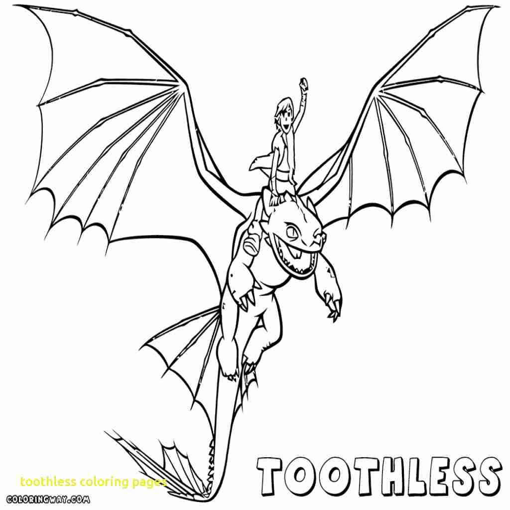 1024x1024 Toothless Coloring Pages Co Unusual Color Page Olegratiy Get Bubbles