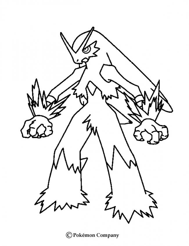 651x850 Little Torchic Coloring Pages