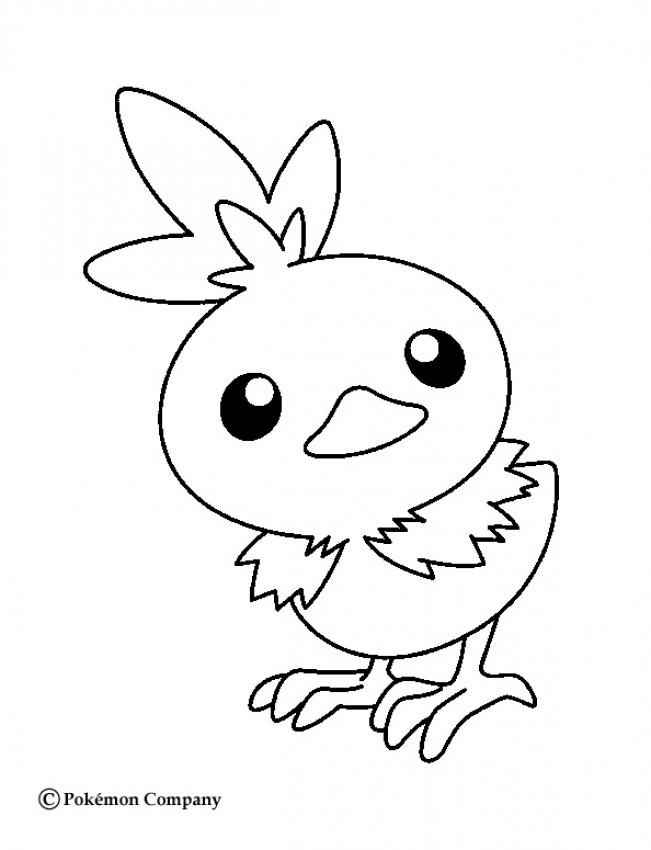 651x850 Torchic Coloring Pages