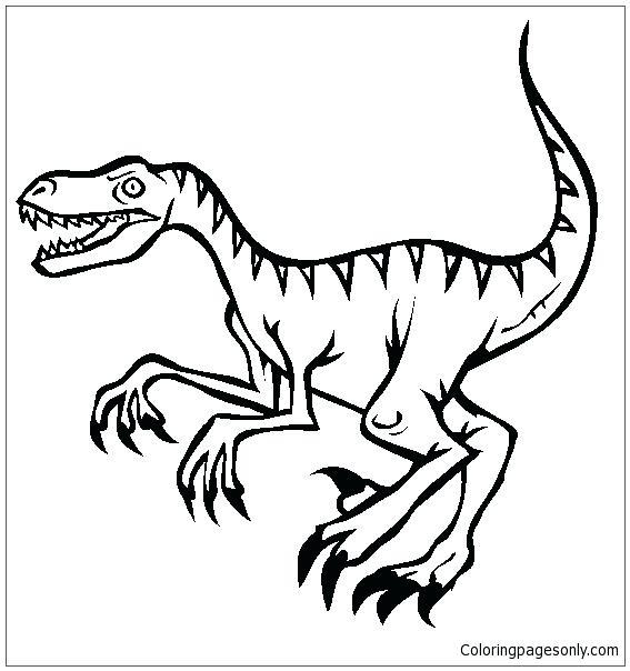 567x604 Toronto Raptors Logo Coloring Pages Raptor Dinosaur Page Free