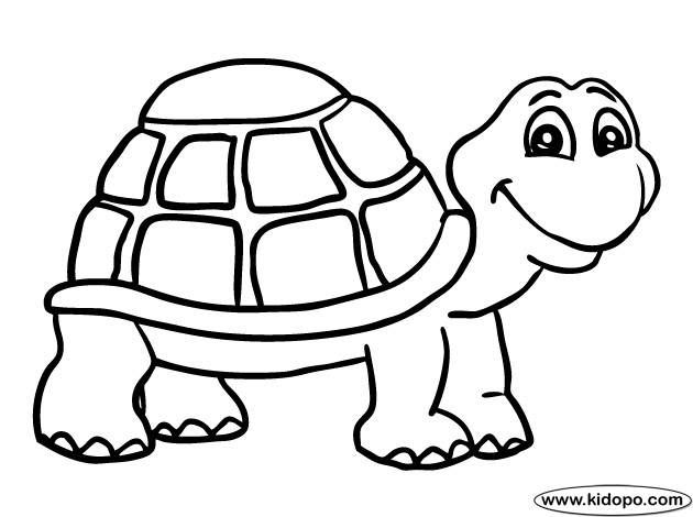 630x470 Tortoise Coloring Page