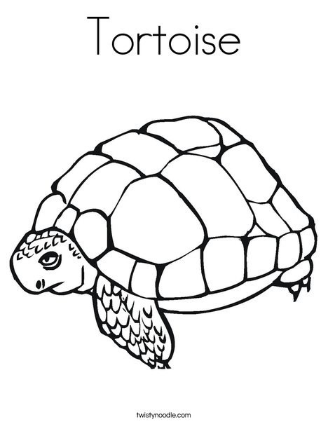 468x605 Tortoise Coloring Page