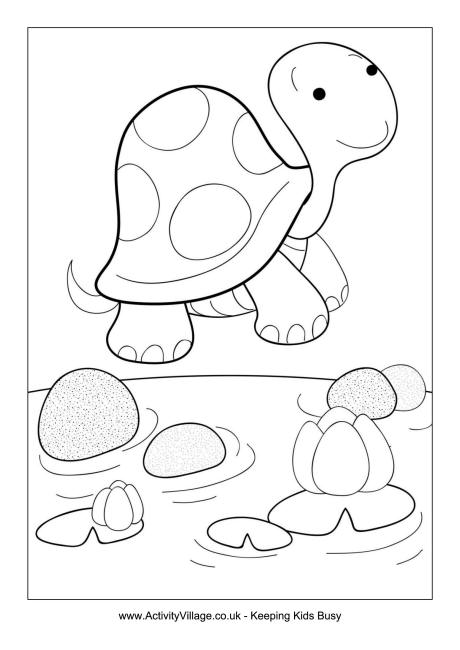 460x650 Tortoise Colouring Page
