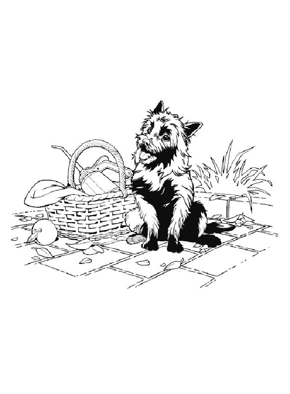 Toto Coloring Pages