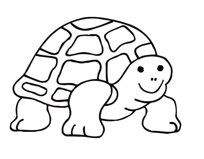 810x630 Pin Coloring Page
