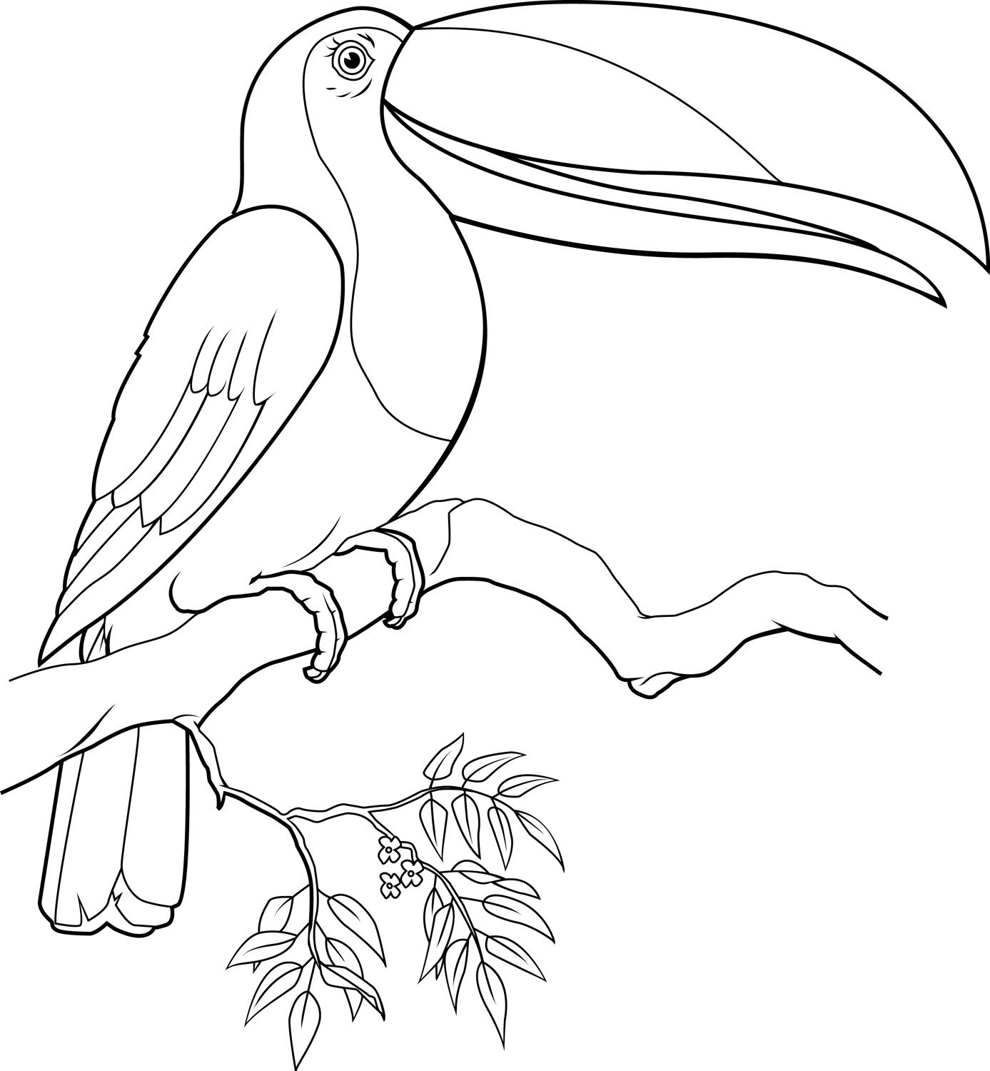 1387x1500 Toucan Coloring Page Free Of Toucans Coloring Pages For Toucan