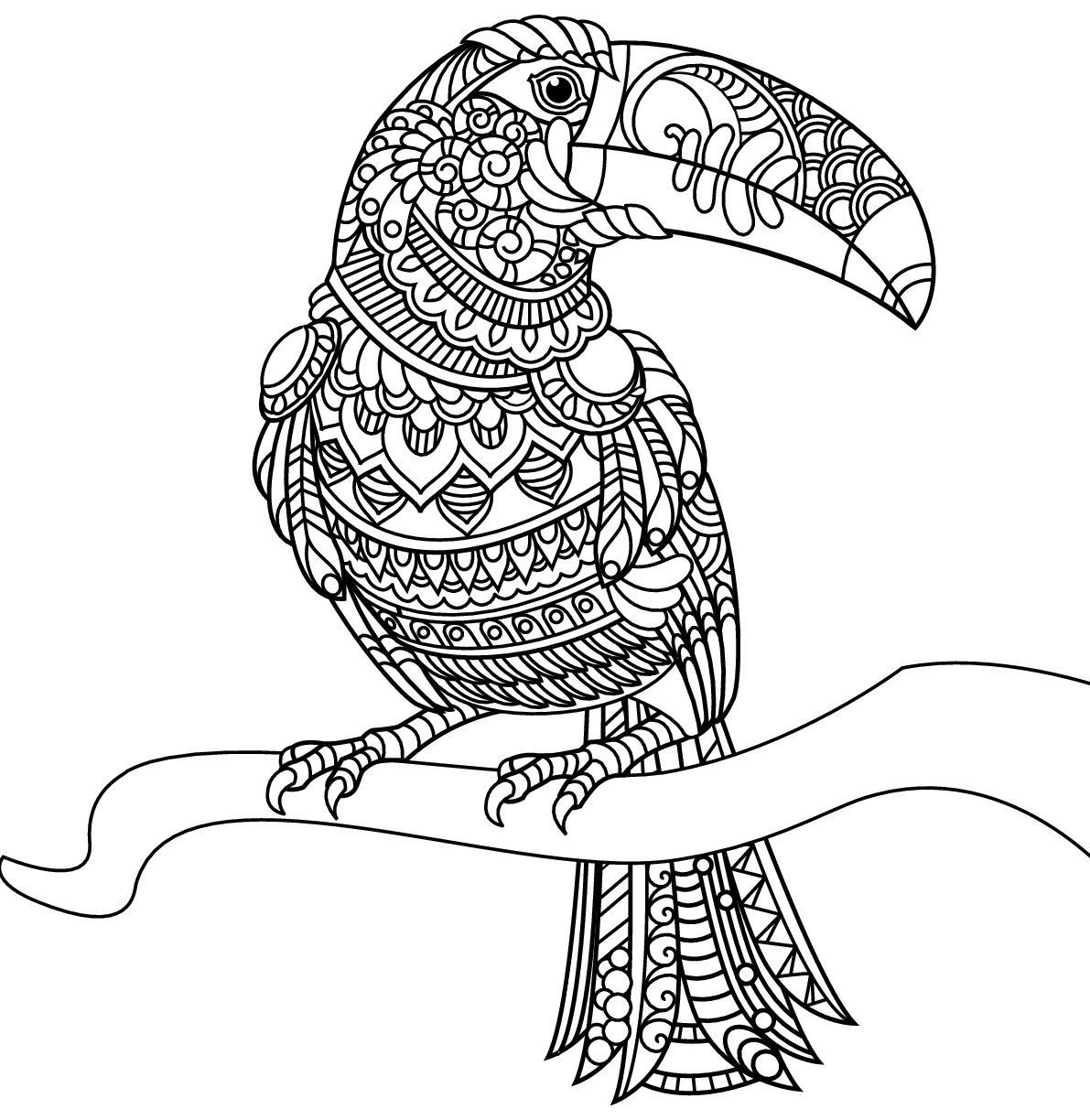 1191x1224 Toucan Coloring Pages To Print Page For Preschoolers Sam Free