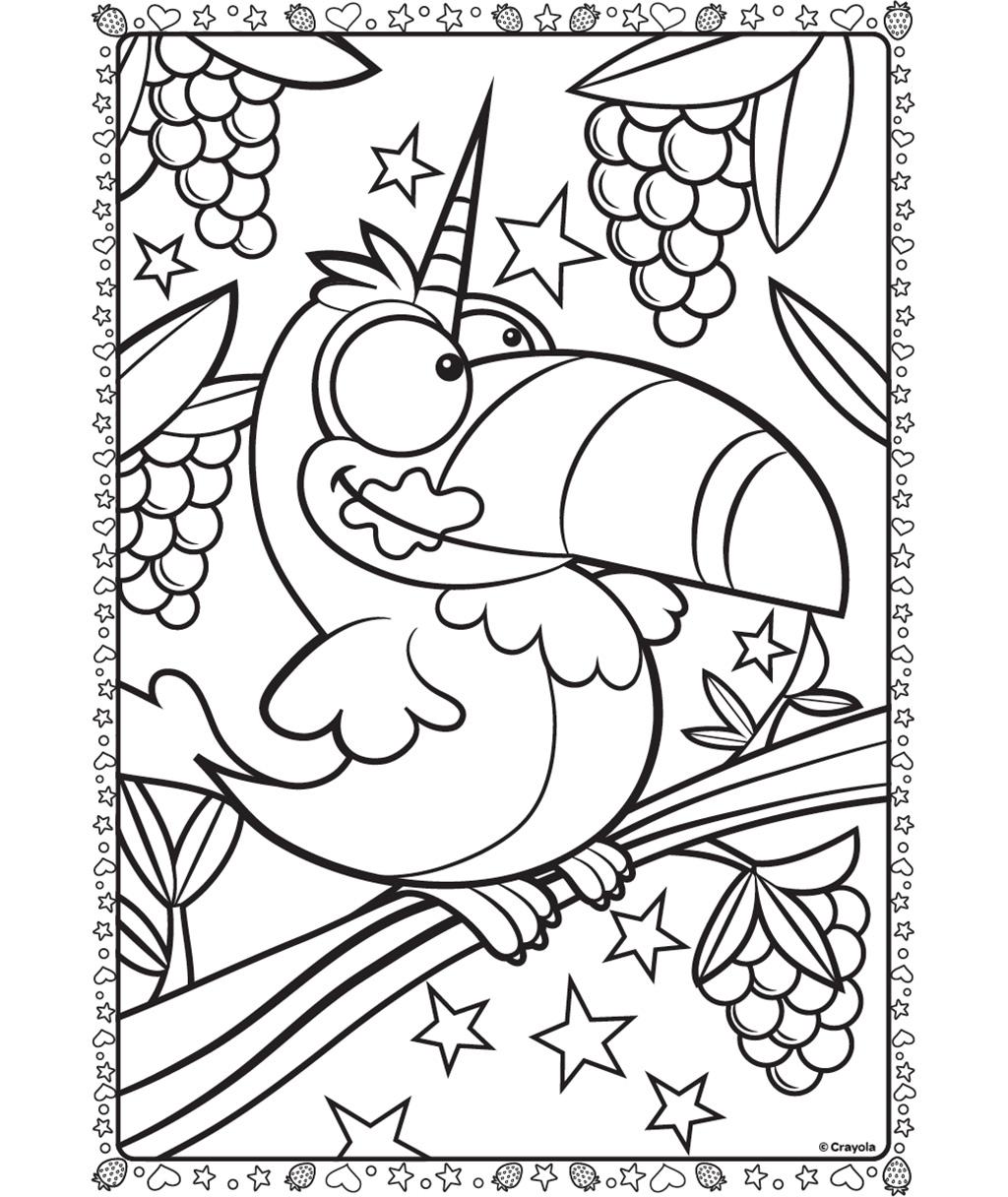 1024x1216 Uni Toucan Coloring Page