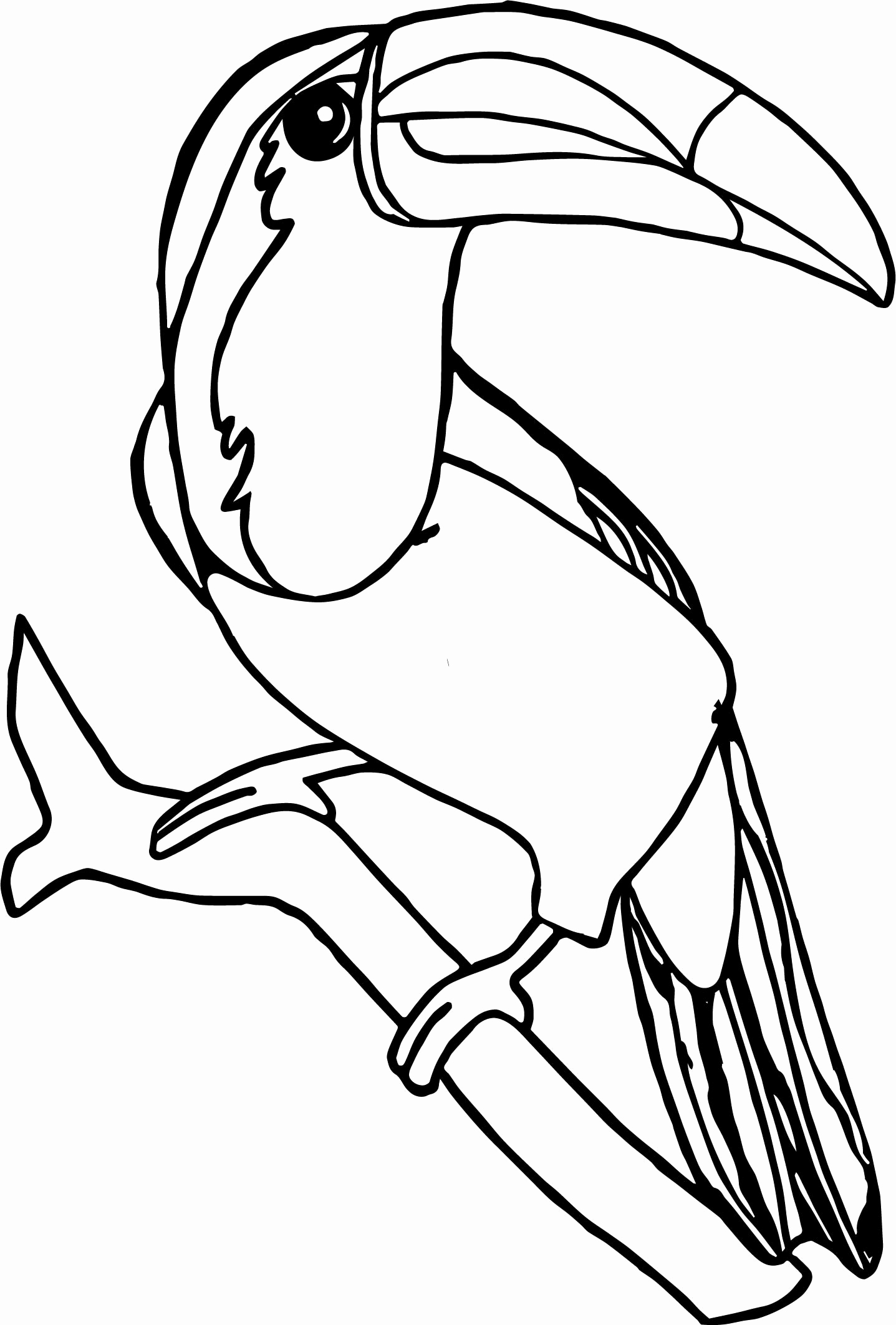 1437x2125 Toucan Coloring Page Pages Beautiful With Ribsvigyapan Toucan