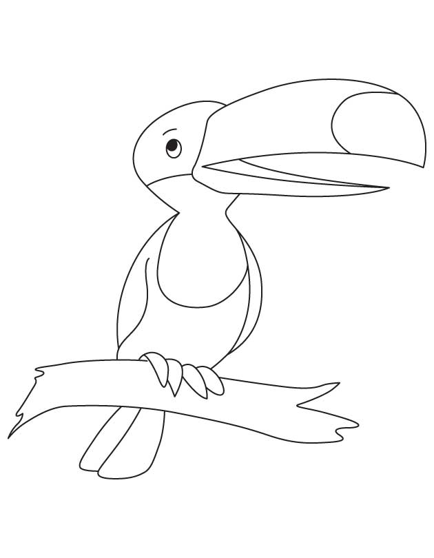 630x810 Toco Toucan Coloring Pages