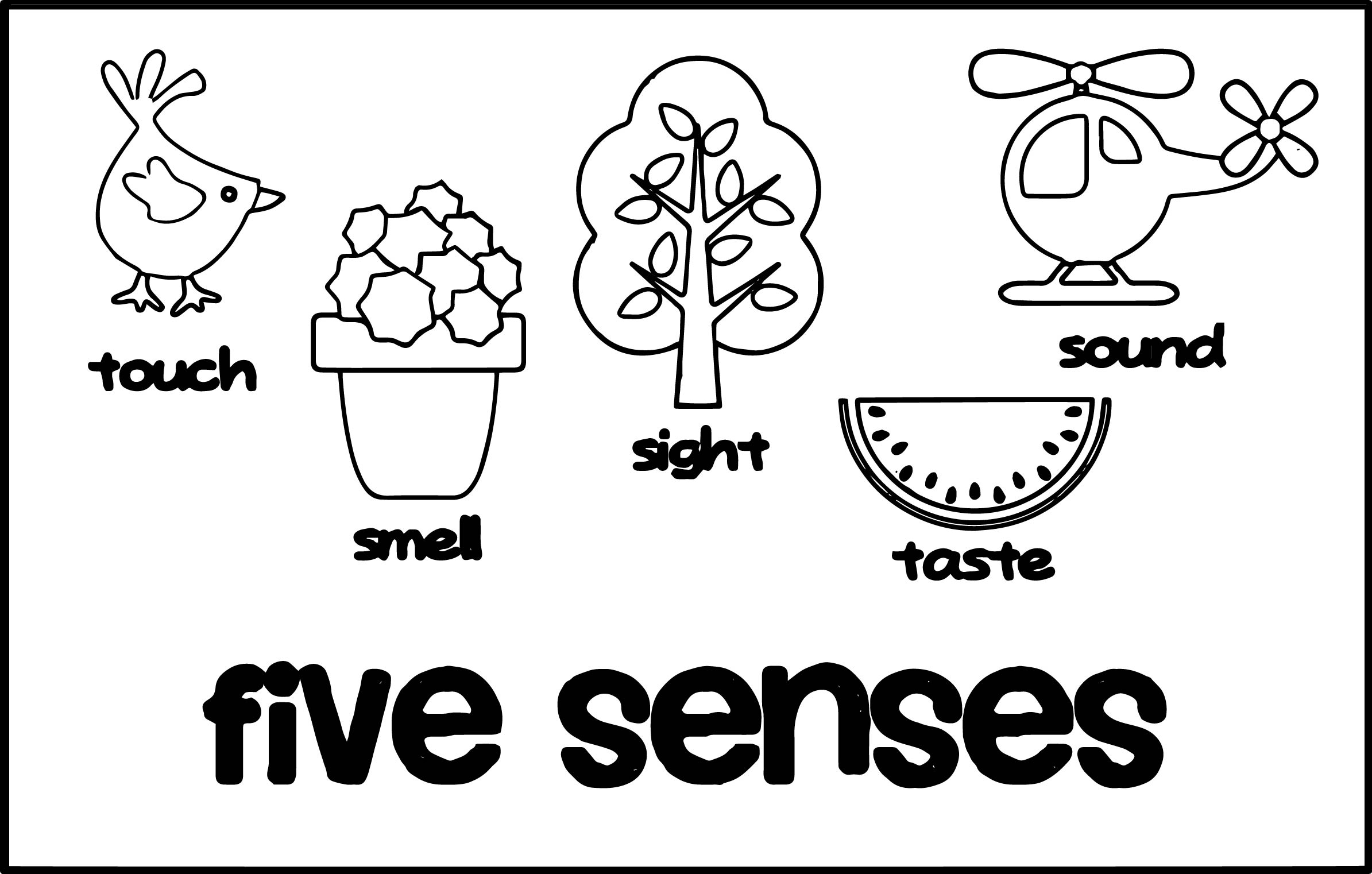 2389x1522 Senses Cute Coloring Page Pages