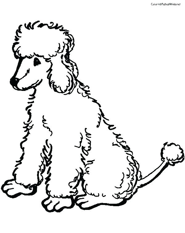 Toy Poodle Coloring Pages