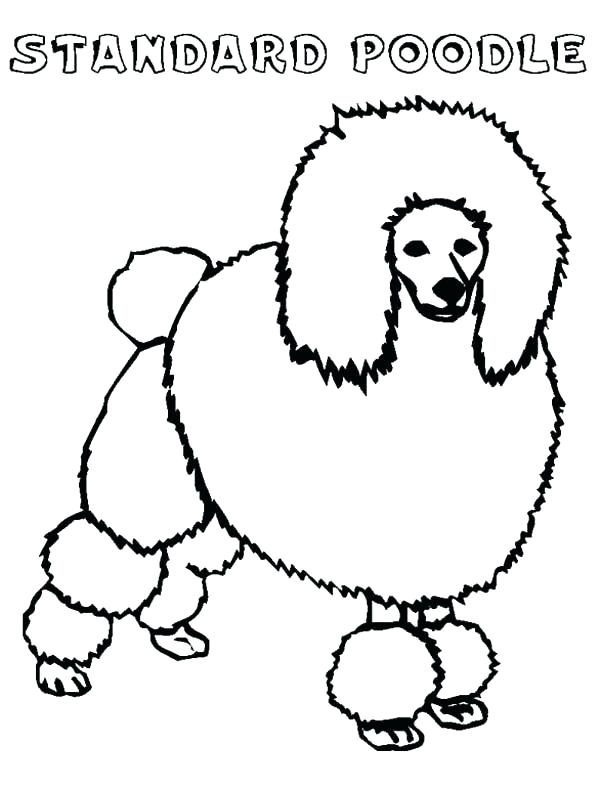 600x788 Poodle Coloring Page Glamorous Poodle Coloring Page Crayola Photo