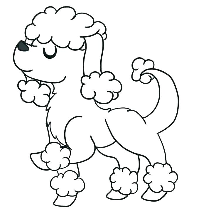 736x736 Poodle Coloring Page Poodle Coloring Page Poodle Coloring Pages