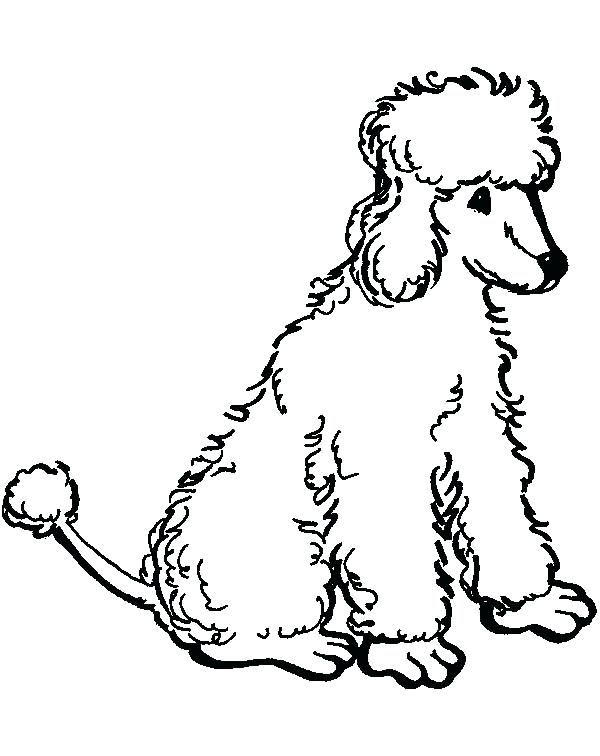 600x756 Poodle Coloring Pages Printable Coloring Pages