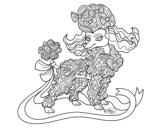 570x441 Cute Frilly Toy Poodle Adult Coloring Page Digital Stamp