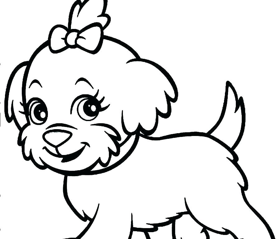 900x768 Poodle Coloring Pages Related Post Standard Poodle Coloring Pages