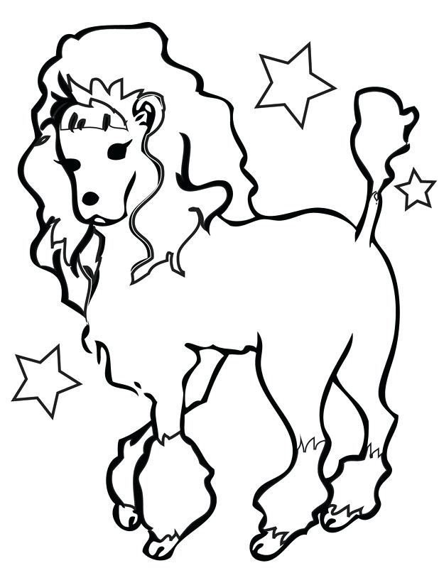618x800 Poodle Coloring Pages Standard Miniature And Toy Poodles Coloring