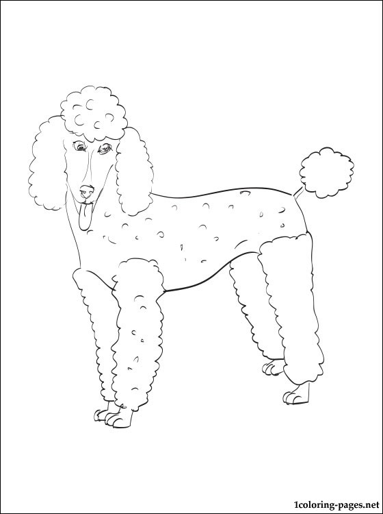 560x750 Poodle Coloring Page Coloring Pages