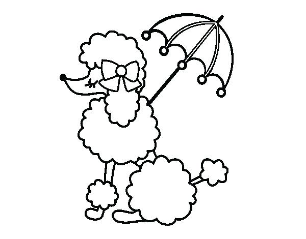 600x470 Poodle Pictures To Color